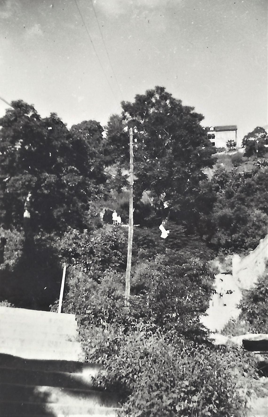 Environ du Palais de la Reine, Tananarive.